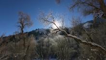 Cold Mountain Dolly Shot