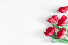 Flowers Composition Romantic. Red Tulips On White Background. Wedding. Birthday. Happy Womens Day. Mothers Day. Valentine's Day. Flat Lay, Top View, Copy Space