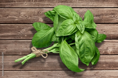 Fotografie, Obraz Green basil leaves on wooden background
