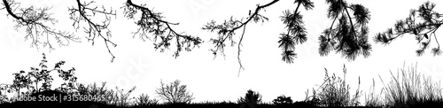 Foto Set of natural tree branches, bushes and grass. Vector eps10.