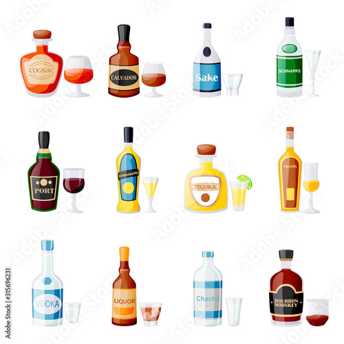 Alcohol drink bottles and glasses Canvas Print