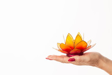 Woman Hand Holding A Lotus Flo...