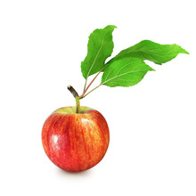Ripe Red Variegated Apple With...