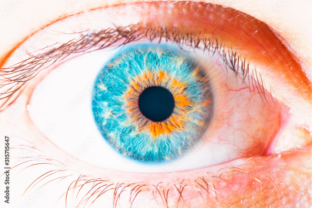 Fototapeta blue eye macro photography