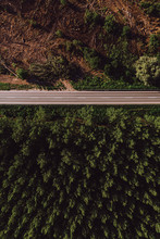 Aerial View Of Empty Road Thro...