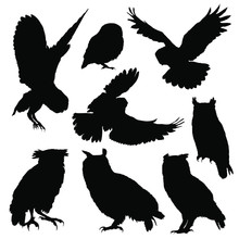 Owl Silhouette Set. Vector Ill...