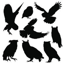 Owl Silhouette Set. Vector Illustration