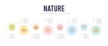 Nature Concept Infographic Design Template. Included Waves, Branch, Bird, Reed, Iceberg, Hive Icons