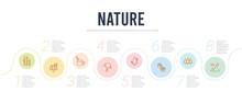 Nature Concept Infographic Des...