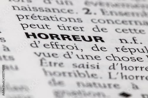 Définition du mot horreur dans le dictionnaire français Canvas Print