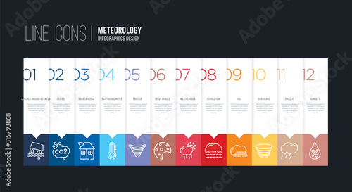 Fotografie, Obraz infographic design with 12 options