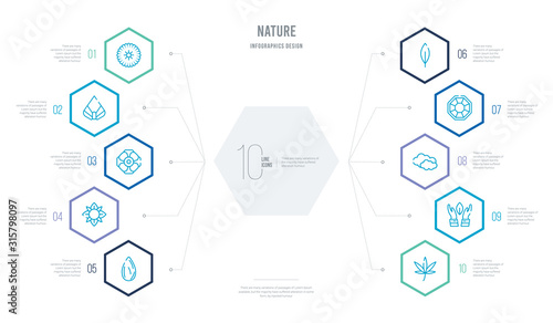 nature concept business infographic design with 10 hexagon options Canvas Print