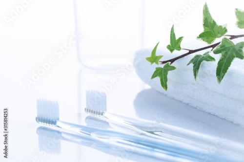 Obraz na plátně 洗面台の歯ブラシとタオル