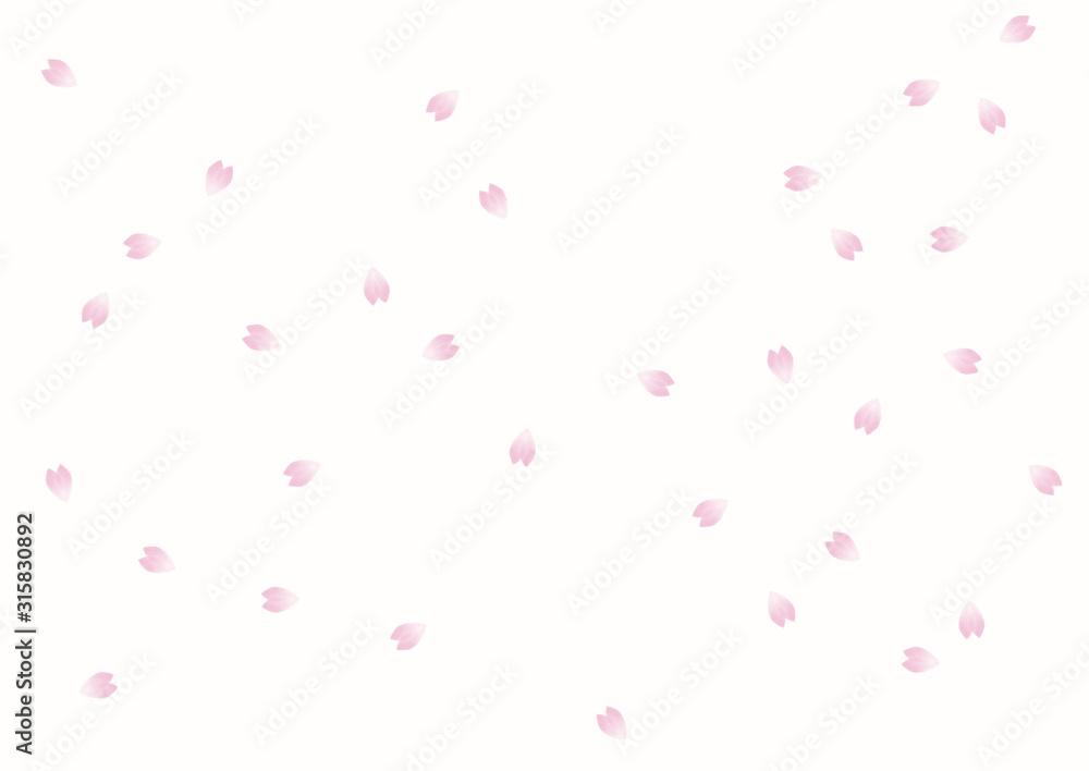 Fototapeta 桜 花びら 水彩