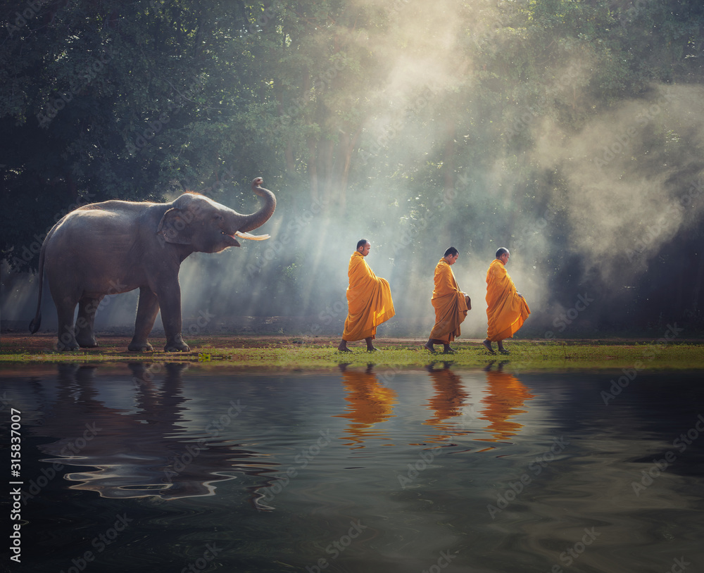 Fototapeta Thailand Buddhist monks walk collecting alms with elephant is traditional of religion Buddhism on faith Thai people