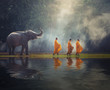Leinwanddruck Bild - Thailand Buddhist monks walk collecting alms with elephant is traditional of religion Buddhism on faith Thai people