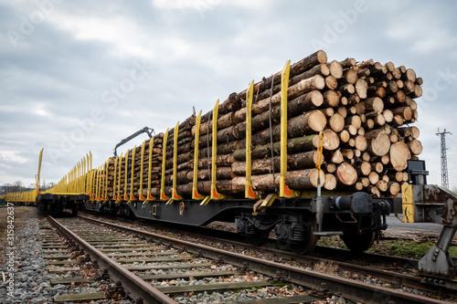 Obraz Abtranzport von Baumstämme durch die Bahn - fototapety do salonu