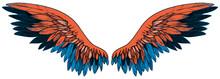 Beautiful Black Blue Orange Wing, Hand Drawn, Vector
