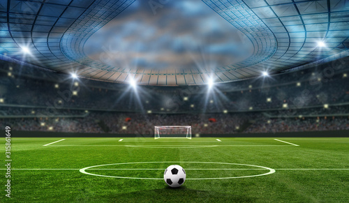 ball on the green field in soccer stadium Wallpaper Mural