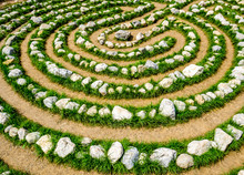 Labyrinth At A Meadow