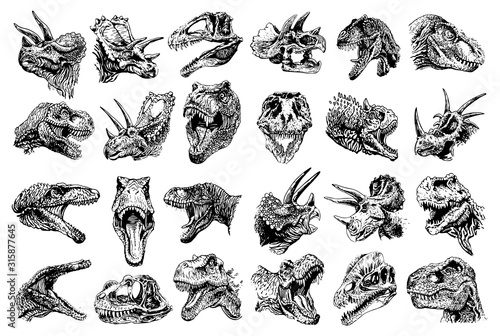 Photo Graphical set of dinosaur portraits isolated on white background, vector illustr
