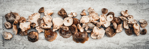 Topview panorama, lots of delicious shiitake mushrooms on wooden table Canvas Print
