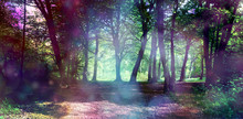 Magical Fairy Forest With Ethe...