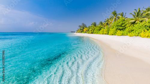 Tropical beach scene, blue sea and palm trees and white sand, summer vacation an Obraz na płótnie