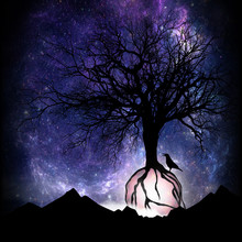 The Magical Tree And The Crow Silhouette Art Photo Manipulation