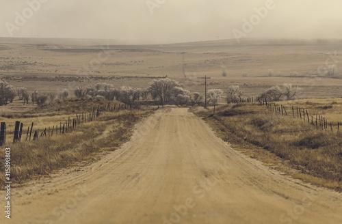Colorado Plains Landcape
