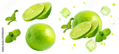 Fototapeta Fresh ripe lime fruit, whole, half cut, lime slices, mint leaves, ice cubes set isolated. Juicy lime mojito cocktail drink clipart ads design elements, studio shot focus stacking on white background  obraz
