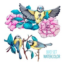 Collection Vector Stock Illustration Blue Bird, Tit, Branch, Navy Blue Leaves, Pink Flower, Peony In Vintage, Watercolor, Isolated Background. Set Elements For Spring Holliday, Festival, Greeting Card