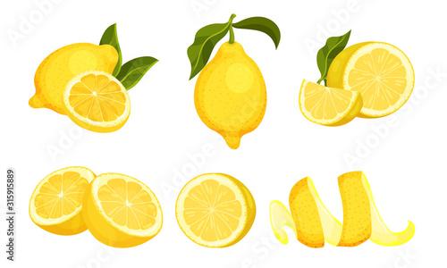 Lemon Fruit Whole and Cut into Halves Vector Set