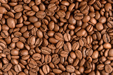 Natural Roasted Coffee Beans. ...