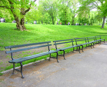 Public Benches In The Park Wit...