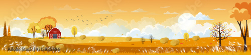 Obraz Vector Autumn panorama landscape farm field with orange sky, Beautiful sunset in Autumn countryside panorama view with yellow foliage,Fall season with copy space for banner background - fototapety do salonu