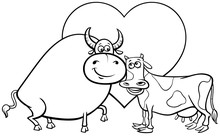 Valentine Card With Cow And Bull Color Book
