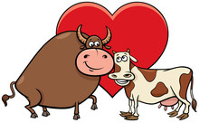 Valentine Card With Cow And Bull Characters In Love