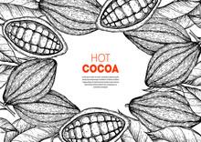 Cocoa Beans Vector Illustratio...