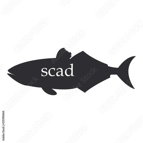 Fényképezés  The figure shows a scad fish black silhouette.
