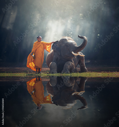 Monk and Elephant at Thailand contryside Canvas Print