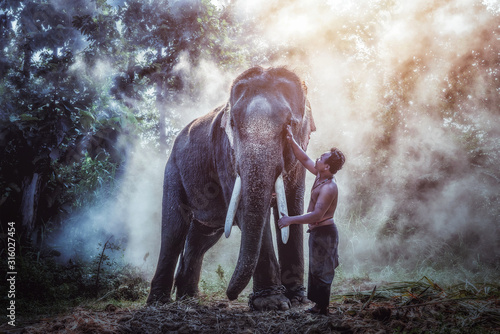 Thailand The mahout man and elephant in wild this is lifestyle of people in surin province Thailand Canvas Print