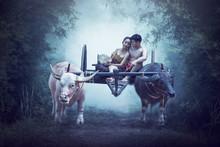 Couple Thai Farmers Family Hap...
