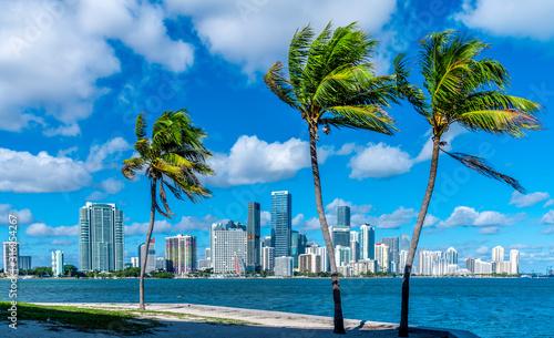 Obraz na plátně Miami