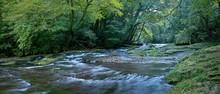 初秋の菊池渓谷の穏やかな流れのパノラマ情景@熊本