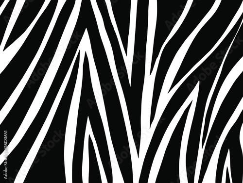 Photo zebra skin texture