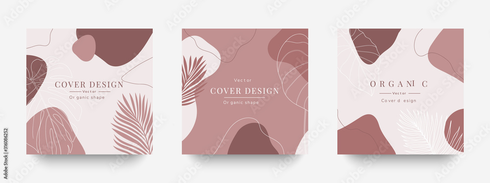 Fototapeta Creative cover design vector  for Instagram story template ,Social media posts, Story and photos, Editable collection backgrounds with Tropical leaf