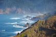 Leinwandbild Motiv Oregon coast