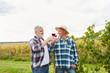 Zwei Erntehelfer trinken ein Glas Rotwein