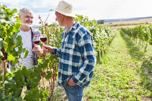 Fotografía Weinbauern trinken ein Glas Rotwein zusammen